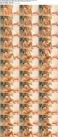181273984_stacicarrcollection_-ftvgirls-com-_super_gorgeous_2_01-_more_experienced_02_s.jpg