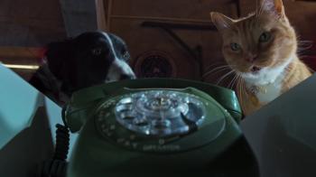 Cani & gatti 3: Zampe unite (2020) FullHD 1080p ITA/AC3 5.1 (Audio Da WEBDL) ENG/AC3+DTS 5.1 Subs MKV