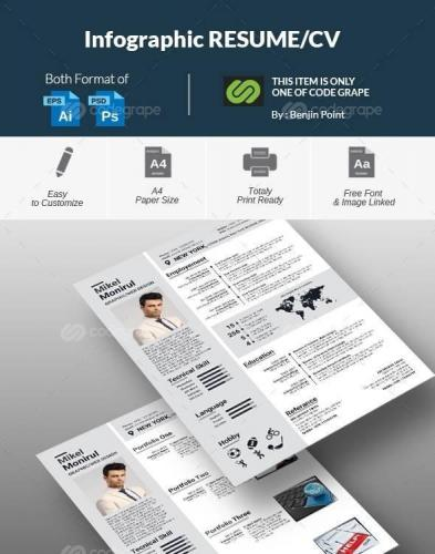 Info Graphic Resume cv 8873